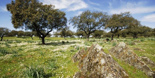 Parque Periurbano La Sierra, Badajoz. Fuente: Turismo.badajoz.es