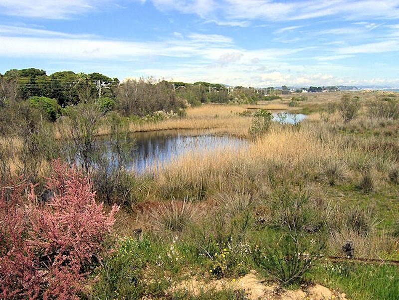 Els Muntanyans. Fuente: Lacamaradeisa.blogspot.com