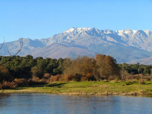 Entorno de los Pinares del Tiétar, Cáceres. Fuente: Redextremadura.com