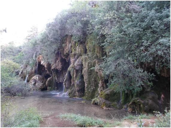 Nacimiento del Río Cuervo. Fuente propia.